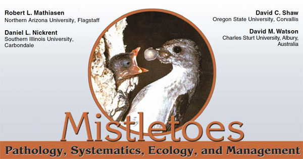 Mistletoes Plant Disease