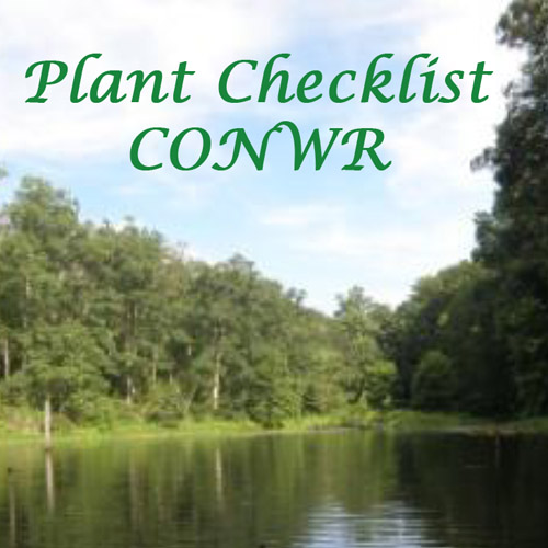 CONWR thumbnail photo